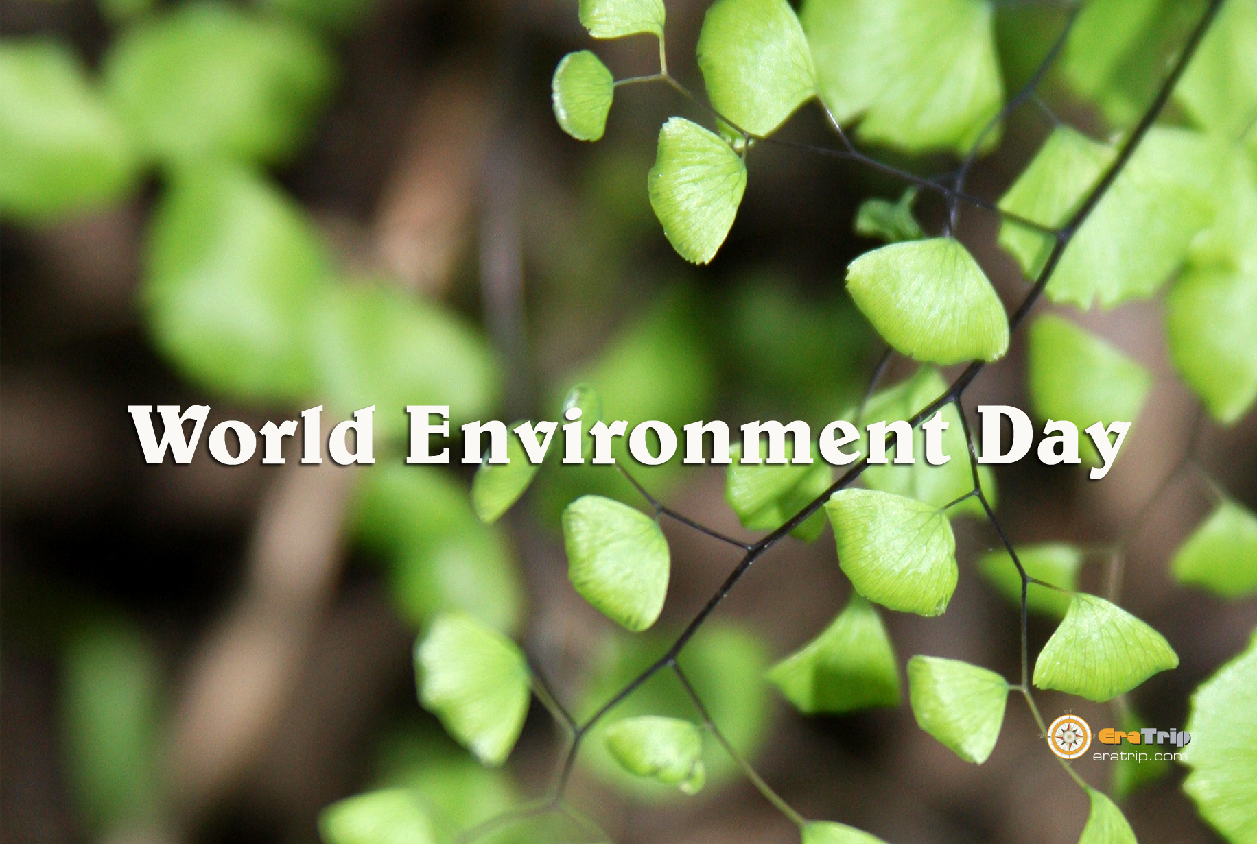 environmentday