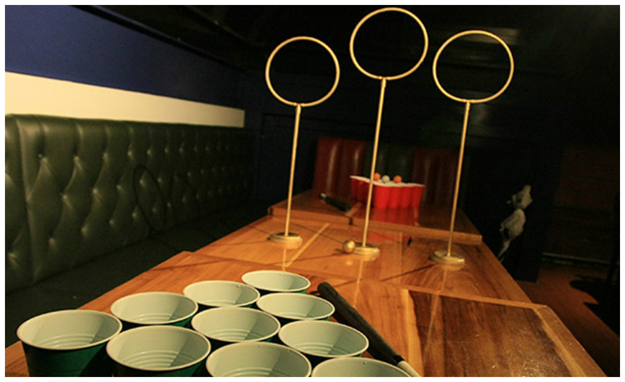 quidditch beer pong- harry potter theme cocktail party ideas