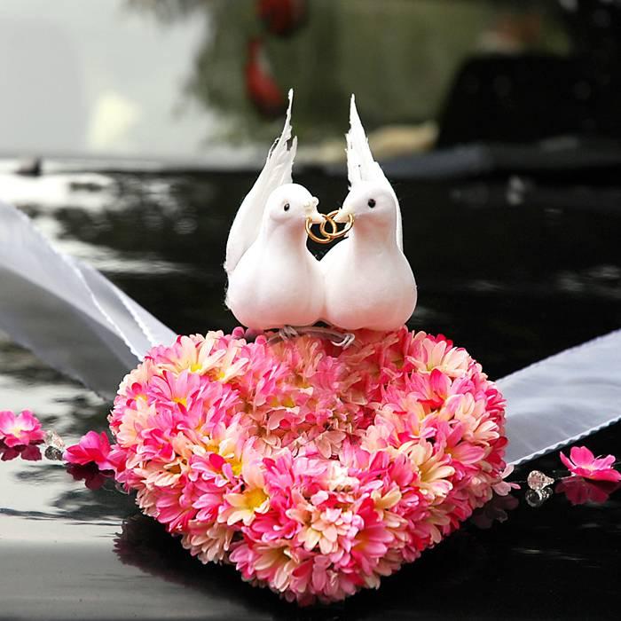 Love Birds Car Decoration