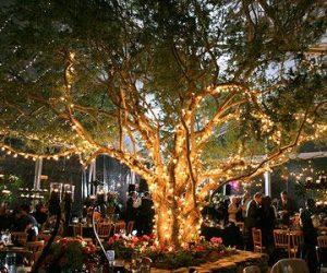 Tree Lights - Wedding Home Decor Ideas