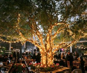 Tree Lights - Wedding Home Decor Ideas