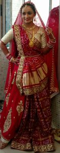 Gujarati Wedding Sarees Gharchola