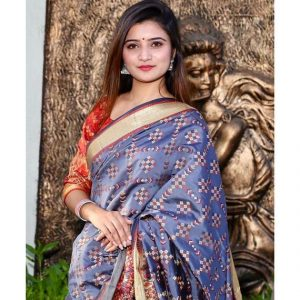 Gujarati Wedding Sarees Patola