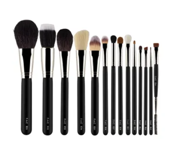 PAC Set of 14 Brushes